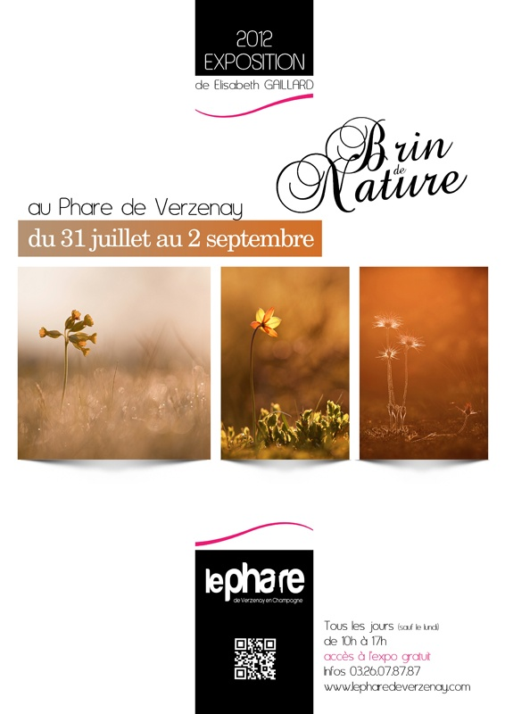 Expo : Brin de Nature au Phare de Verzenay (Marne) agenda evenements archives 2012  phare nature image et nature gaillard exposition elisabeth de brin