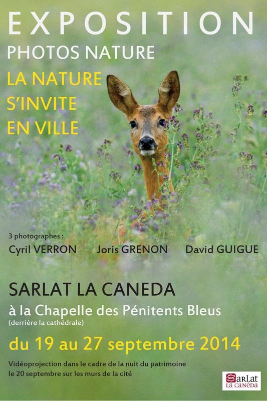 Exposition : La Nature sinvite en ville  du 19 au 27 Septembre à Sarlat La Canéda agenda evenements archives 2014  photographies nature macro exposition