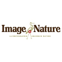 Image & Nature-logo