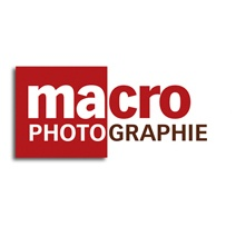 macro-photo